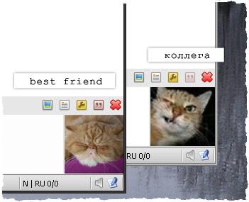 Коты в ICQ