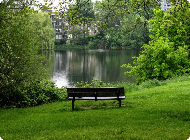 Hampstead Heath ponds