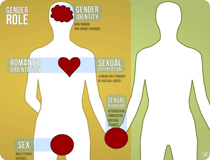 Gay: chart