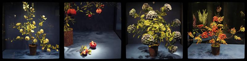 Виктор Каневский: Фарфоровые цветы