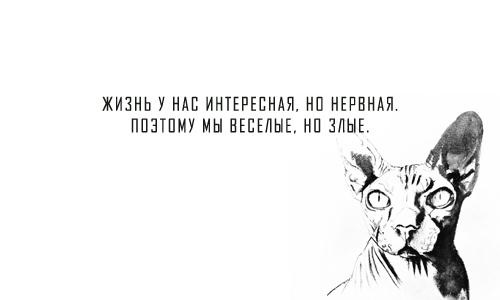 Mood: Жизнь у нас интересная, но нервная. Поэтому мы веселые, но злые.