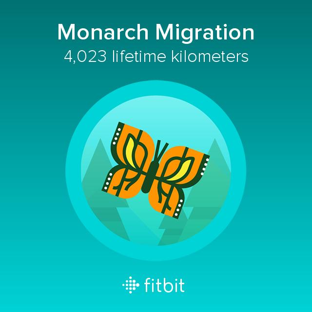 Fitbit: Monarch Migration milestone - 4023 kilometres