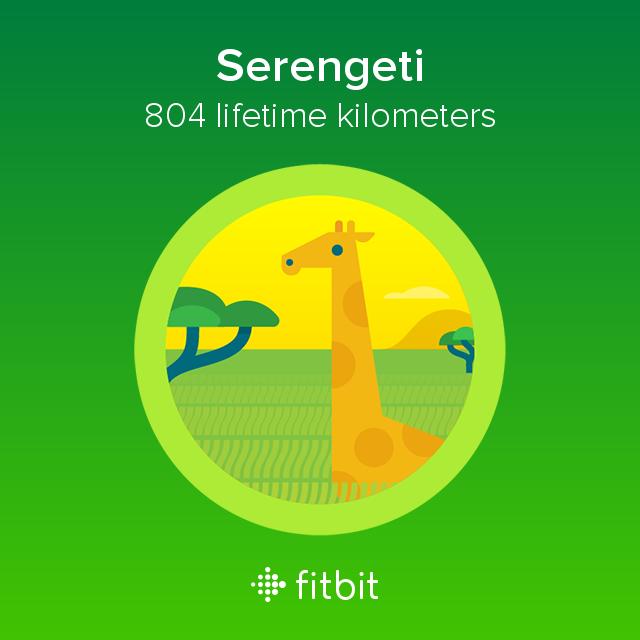 Fitbit: Serengeti milestone - 804 kilometres