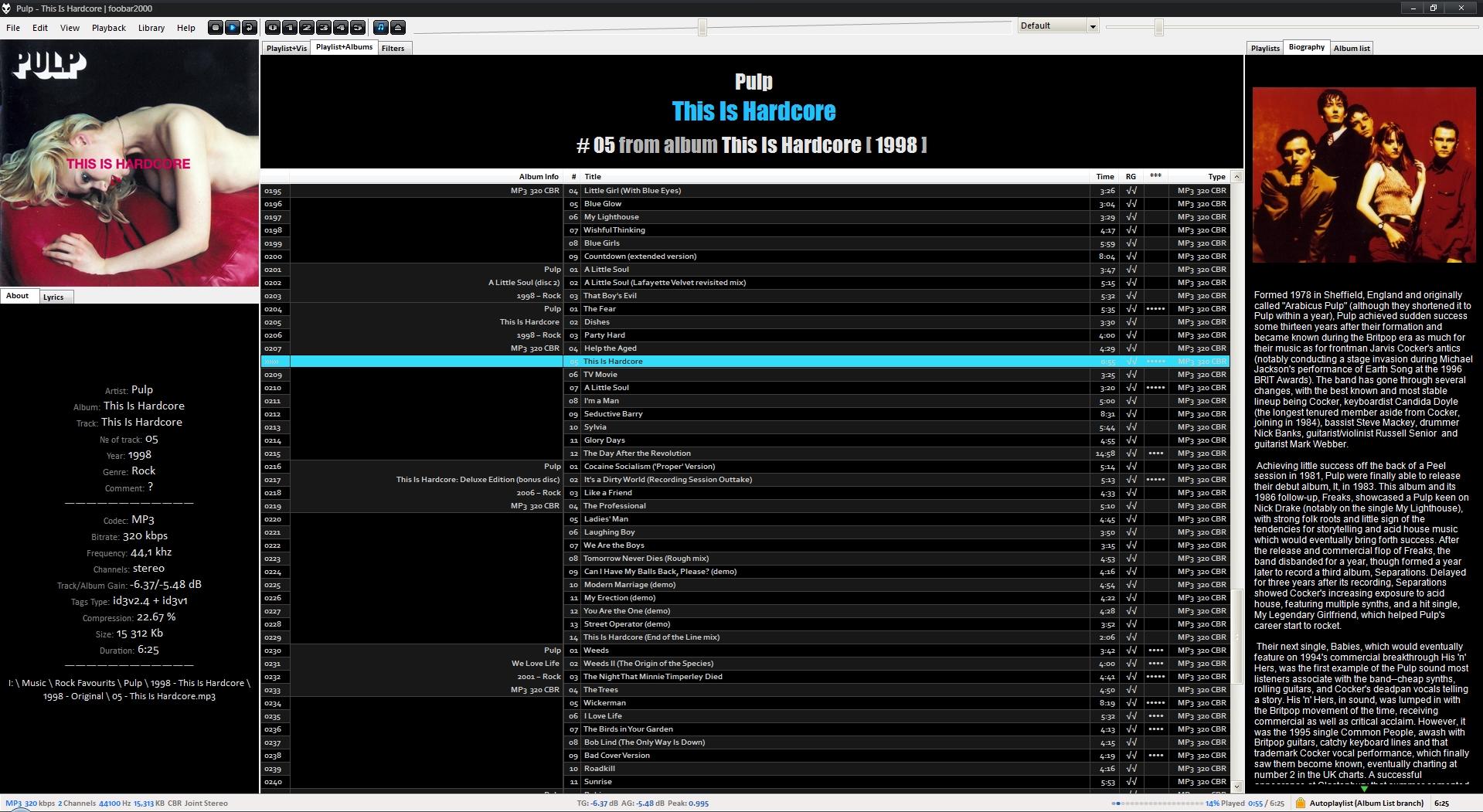 foobar2000 in 2009-2020 - black-blue custom theme for Brumal config, album mode, biography